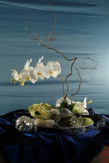 Módulo 2 - introdução a arte floral